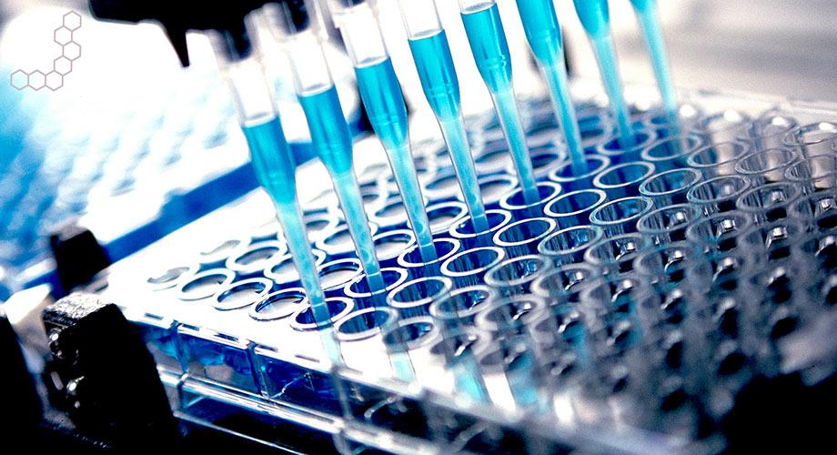 Bioanalytical Student Internships